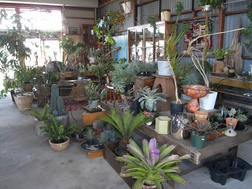 成長途上のかっこいい園芸店『GREEN PEOPLE』@白毫寺町