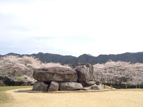 『石舞台古墳』の満開の桜を見てきました@明日香村