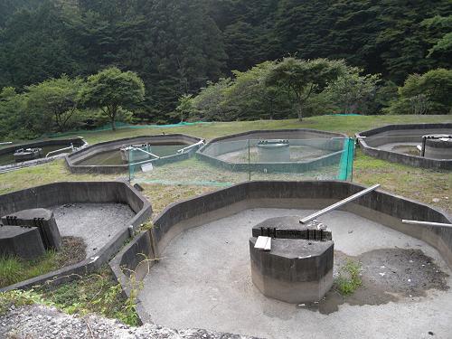 平維盛や温泉、素敵な縁側など!『野迫川村』めぐり-09