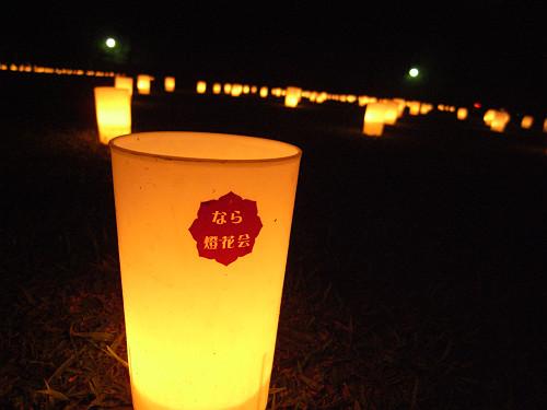 15周年!『2013なら燈花会』@奈良公園-08