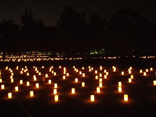 15周年!『2013なら燈花会』@奈良公園-10