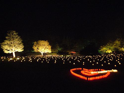 15周年!『2013なら燈花会』@奈良公園-13