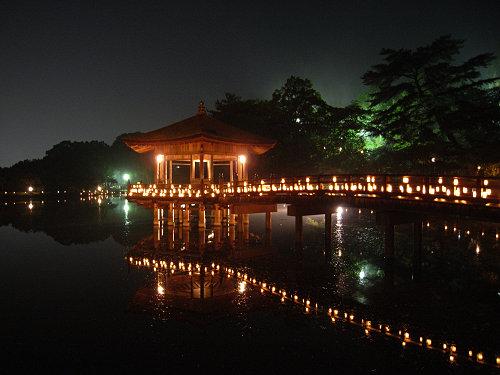15周年!『2013なら燈花会』@奈良公園-21