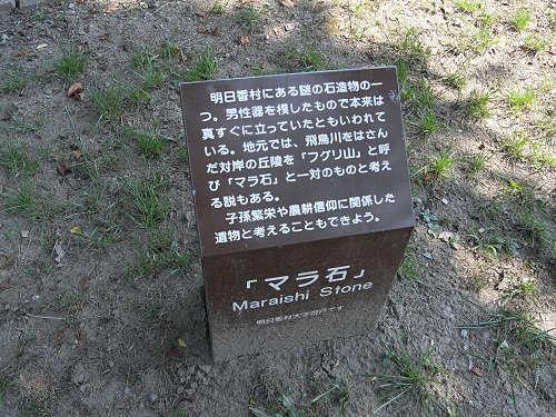 男根型の『マラ石』@明日香村祝戸地区-07