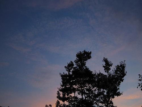 【写真】東大寺二月堂の夕暮れ-15