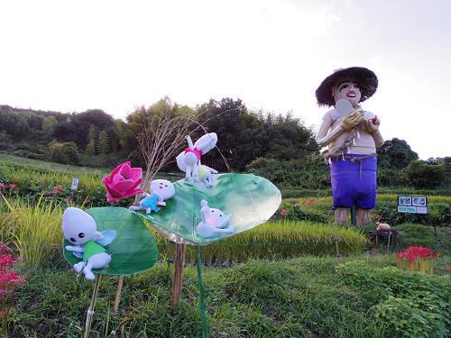 棚田と彼岸花と案山子@明日香村稲渕地区-24