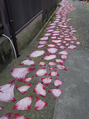 HANARART(はならぁと)2013@奈良きたまちエリア-06