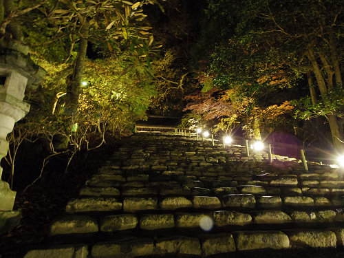 室生寺『国宝 五重塔と紅葉ライトアップ』@宇陀市-13