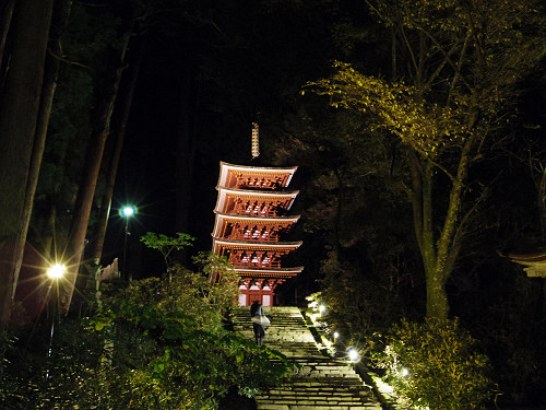 室生寺『国宝 五重塔と紅葉ライトアップ』@宇陀市