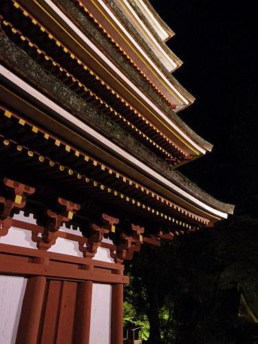 室生寺『国宝 五重塔と紅葉ライトアップ』@宇陀市-22