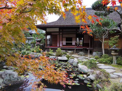 名園「香藕園」の紅葉がピーク『當麻寺中之坊』@葛城市