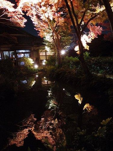 紅葉ライトアップ『等彌神社』@桜井市-08