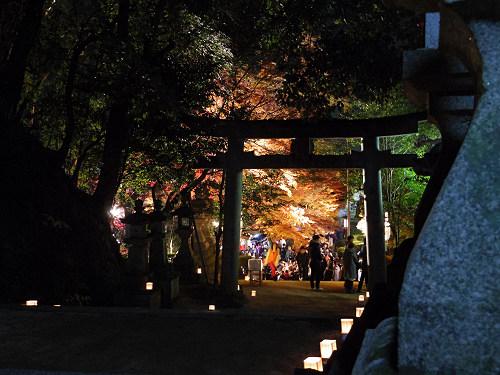 紅葉ライトアップ『等彌神社』@桜井市-10