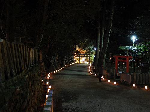 紅葉ライトアップ『等彌神社』@桜井市-11