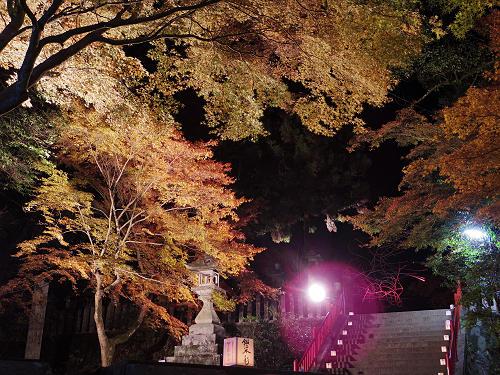 紅葉ライトアップ『等彌神社』@桜井市-13