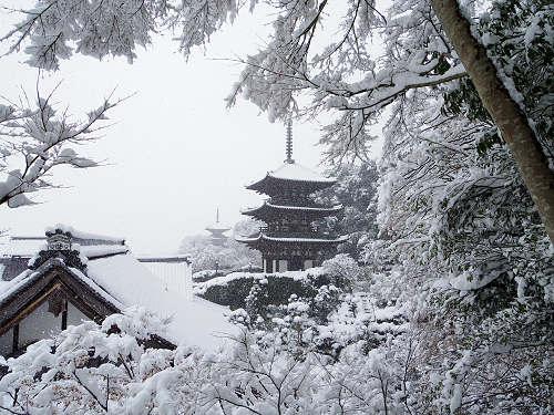 當麻寺の雪景色(西南院)-09