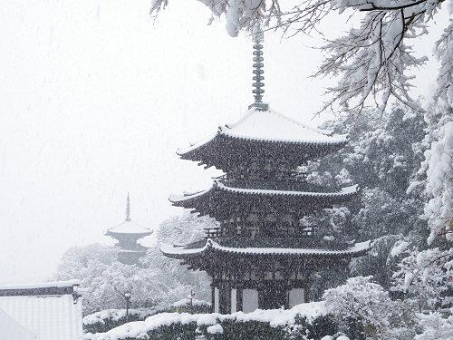 雪に覆われた2つの国宝三重塔。大雪の『當麻寺』@葛城市