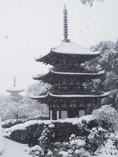 當麻寺の雪景色(西南院)-12