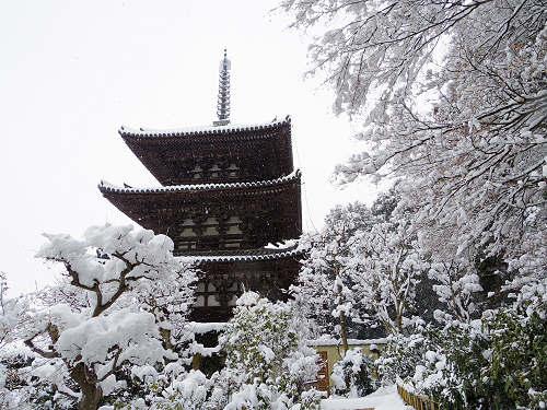 當麻寺の雪景色(西南院)-16