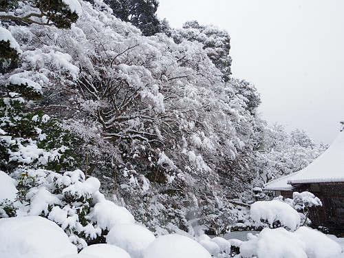 當麻寺の雪景色(西南院)-18