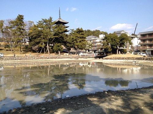 18年ぶり!水を抜いた『猿沢池』@奈良市-07