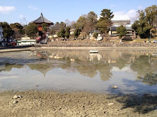 18年ぶり!水を抜いた『猿沢池』@奈良市-08