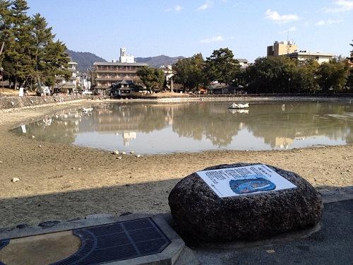 18年ぶり!水を抜いた『猿沢池』@奈良市-10
