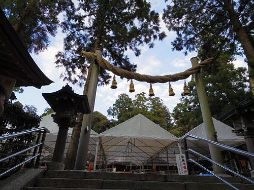 桜満開の『大美和の杜展望台』@大神神社-02
