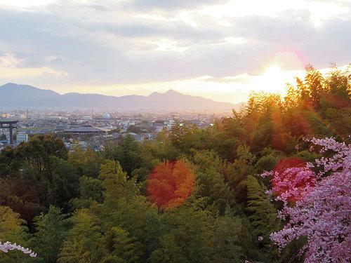 桜満開の『大美和の杜展望台』@大神神社-08