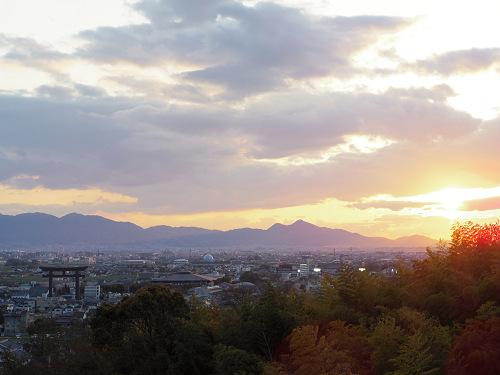 桜満開の『大美和の杜展望台』@大神神社-14