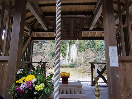 小糸しだれ桜の『大野寺』@宇陀市-12