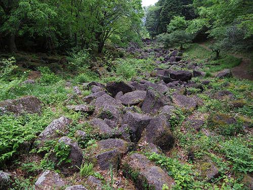 神野山のツツジ(終わりかけ)・鍋倉渓・茶畑@山添村