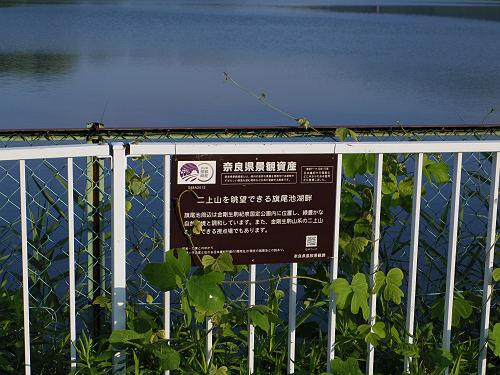 『二上山を眺望できる旗尾池湖畔』@香芝市-03
