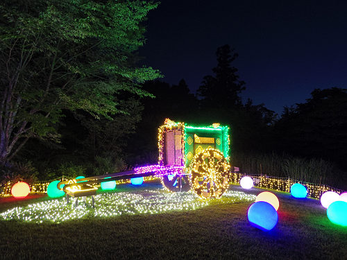 萬葉植物園がLEDの灯りに包まれる『イルミ奈ーラ』@春日大社