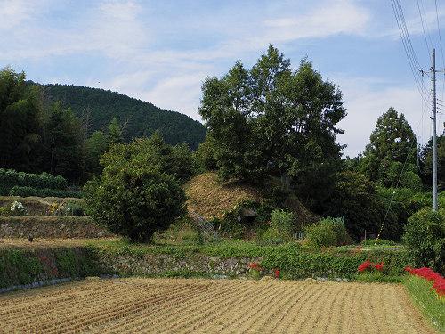 一言主神社と葛城古道のヒガンバナ-12