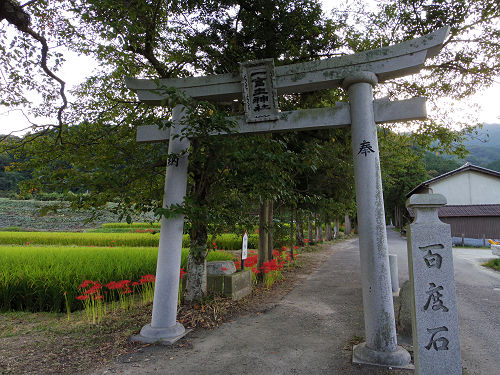 一言主神社と葛城古道のヒガンバナ-23