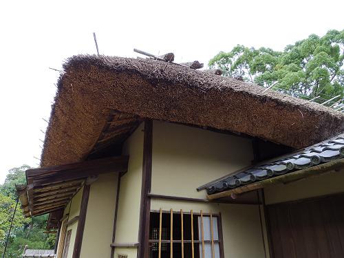 庭園・茶室「八窓庵」無料公開@奈良博-13