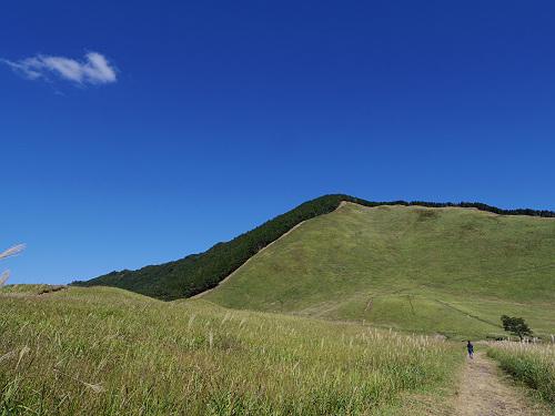 曽爾高原のススキと倶留尊山登山-08