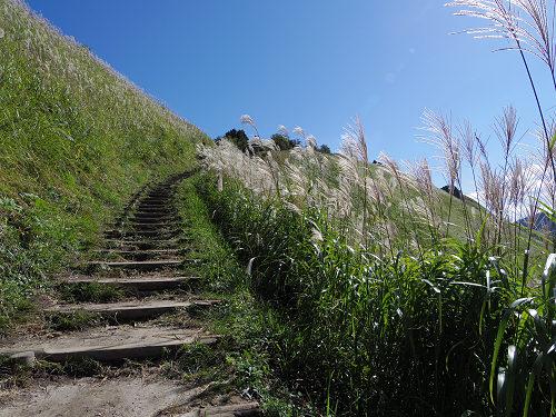 曽爾高原のススキと倶留尊山登山-14