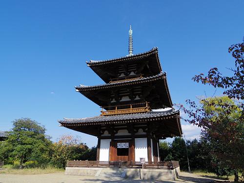国宝「三重塔」とコスモスが美しい『法起寺』@斑鳩町