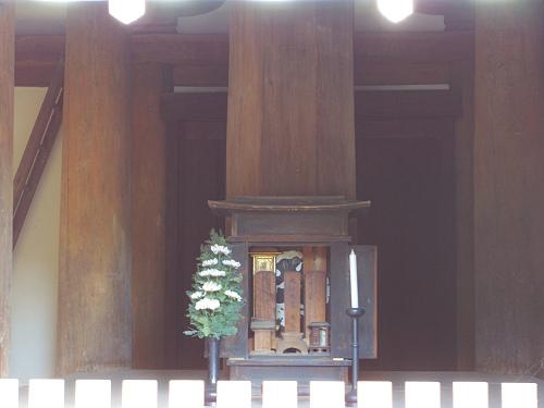 三重塔とコスモス『法起寺』@斑鳩町-10