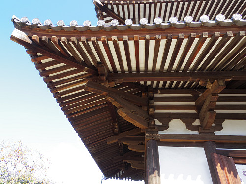 三重塔とコスモス『法起寺』@斑鳩町-12