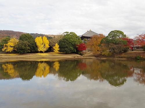 鮮やかな赤と黄!紅葉に染まった『東大寺』@奈良市