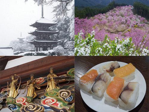 【2014年まとめ】個人的に楽しかった奈良の記事20選
