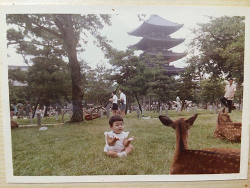 昔の奈良公園はこうでした。70年頃の懐かしい写真たち