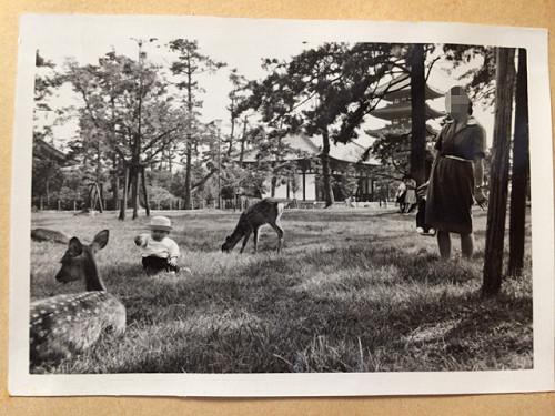 1970年頃の奈良での記念写真たち-09