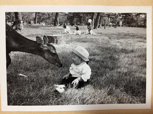1970年頃の奈良での記念写真たち-10