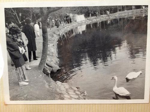 1970年頃の奈良での記念写真たち-13
