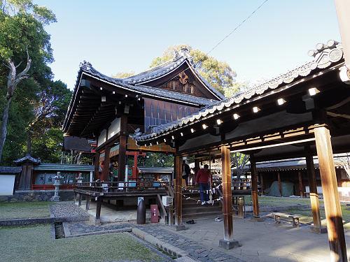 しだれ桜2015@氷室神社(奈良市)-14