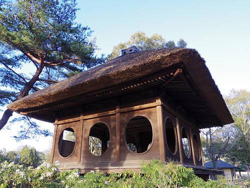 円窓亭に浮見堂。春の「浅茅ヶ原園地」散策@奈良公園
